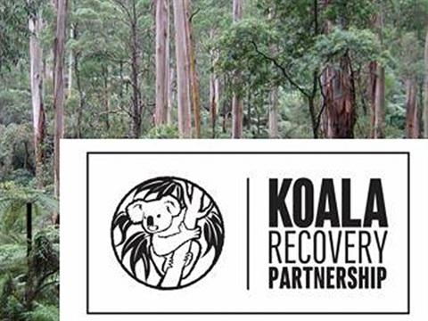 Koala Recovery Partnership